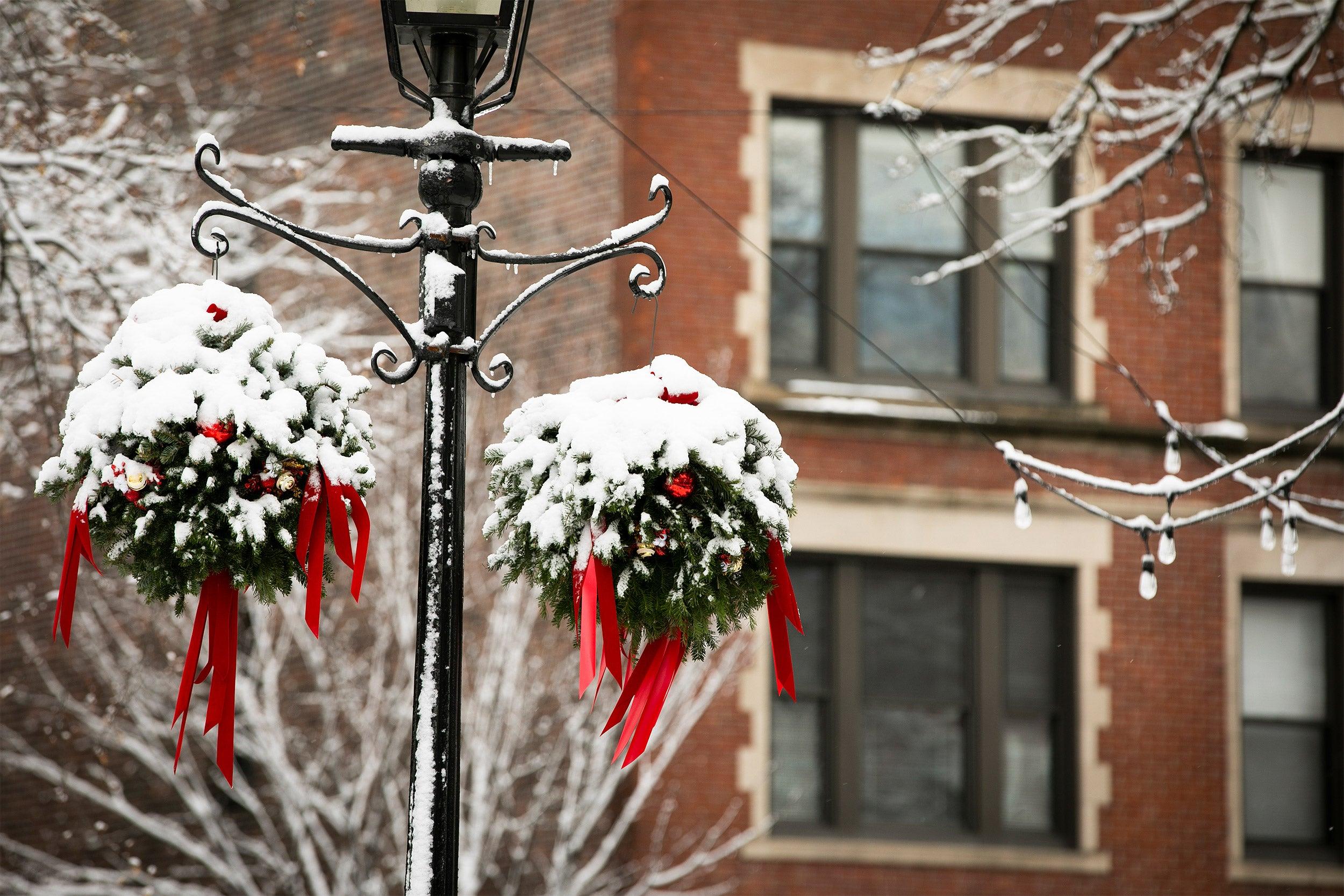 Snow on wreaths.