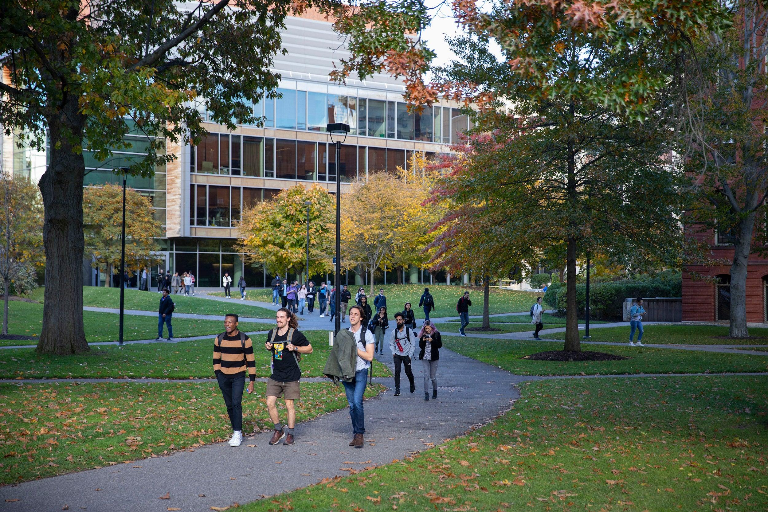 Students walking through Harvard Yard.