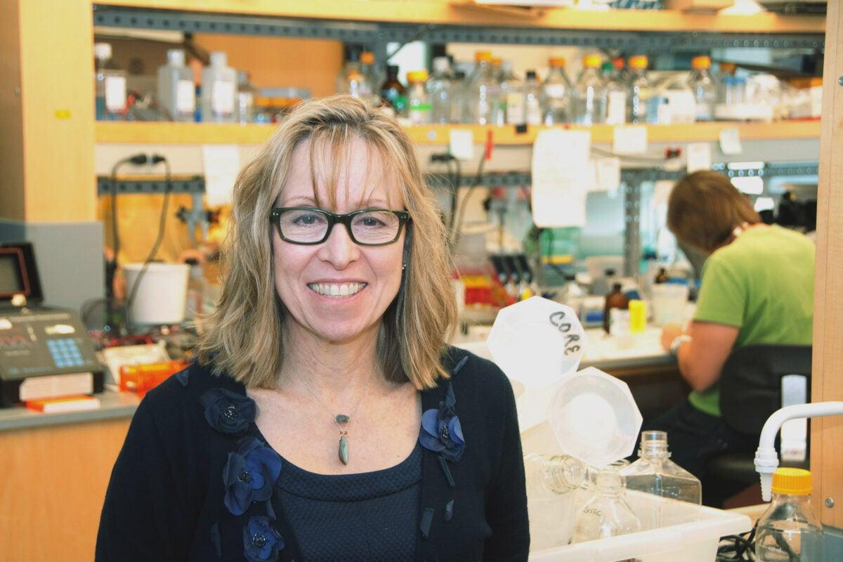 Vicki Rosen in a lab.