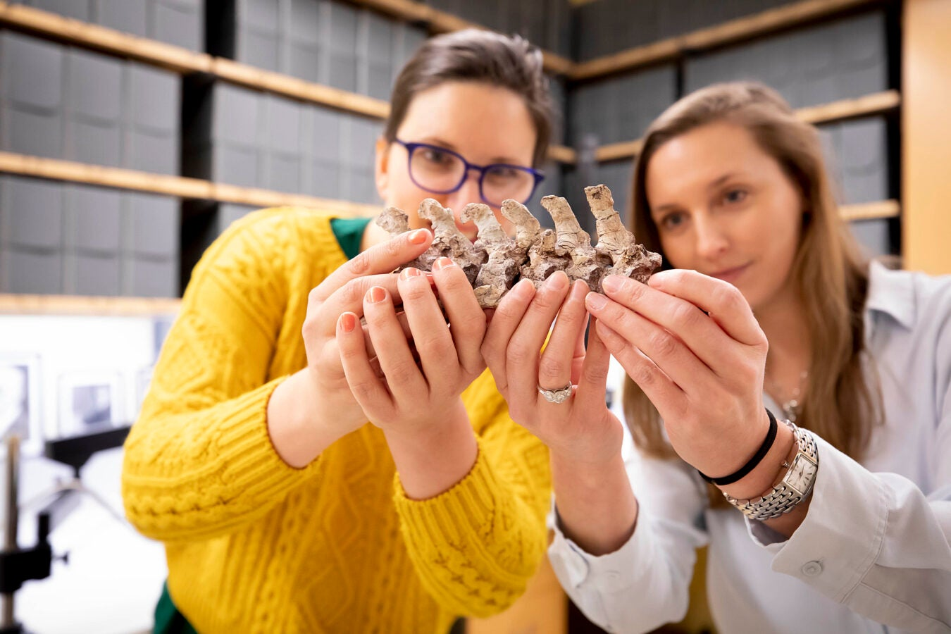 Katrina Jones and Stephanie Pierce holding animal fossil.