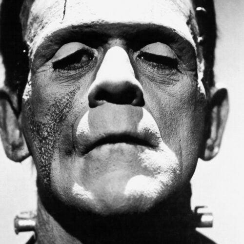 Frankenstein photo.