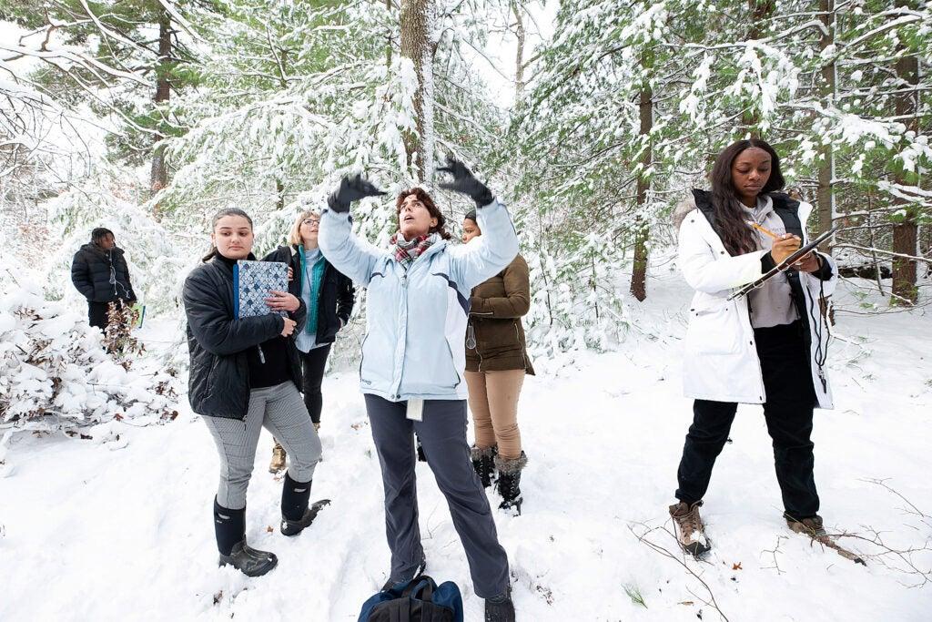 Students at Arnold Arboretum.