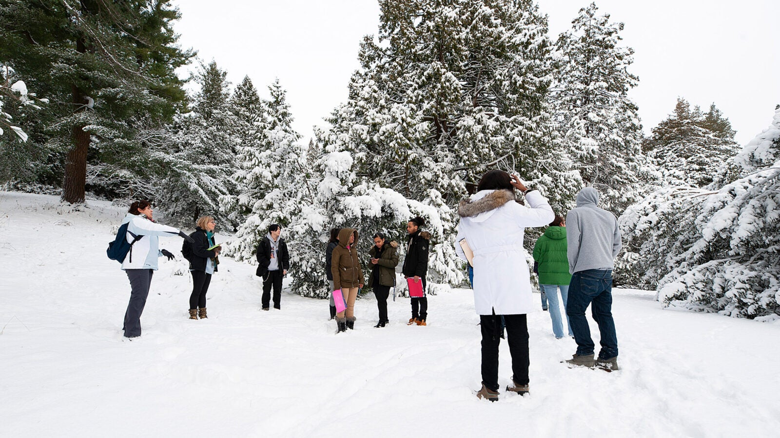Local high school students in snow.