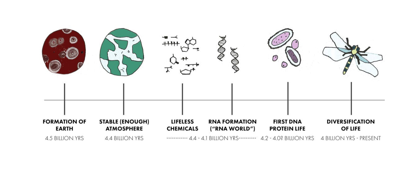 A sketched timeline of the origins of life on the planet.