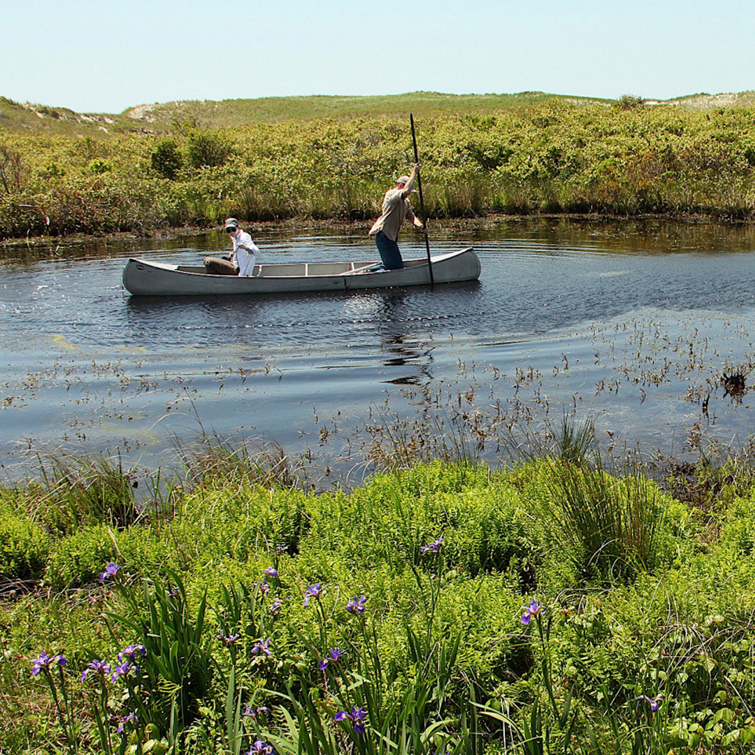 Two researchers in a paddleboat on a pond.