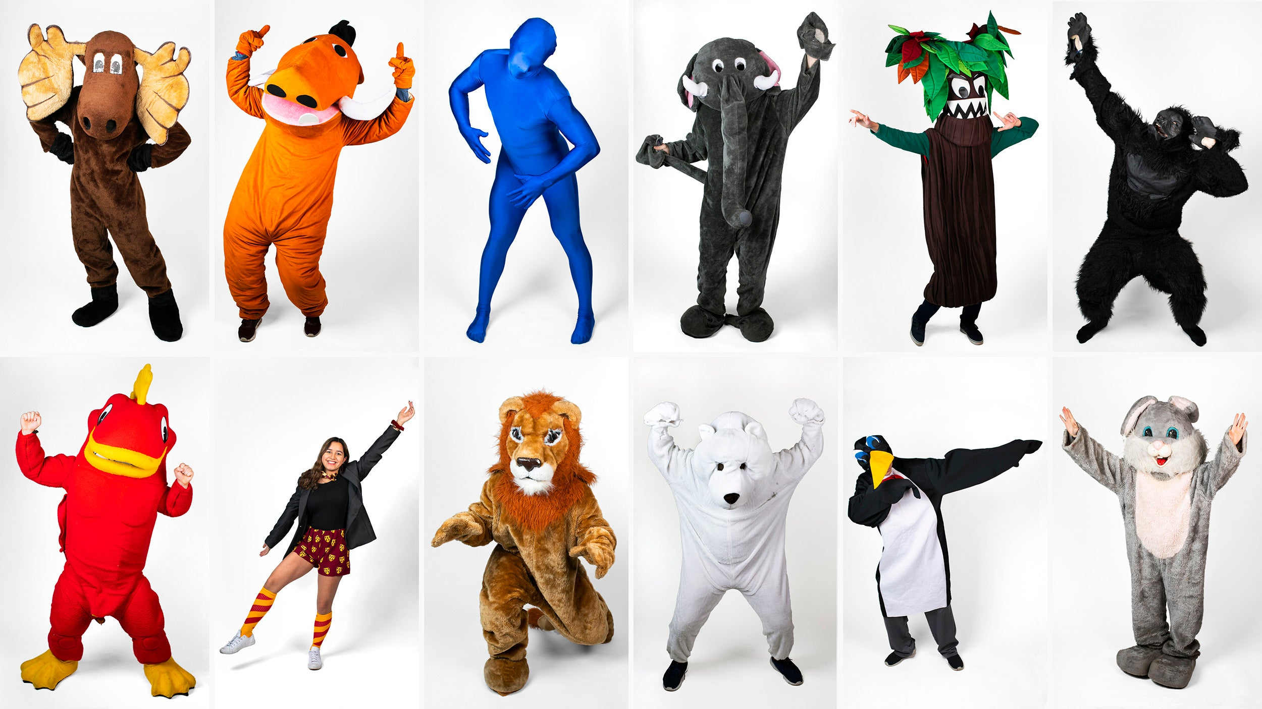 All twelve House mascots are pictured in costume striking a pose.