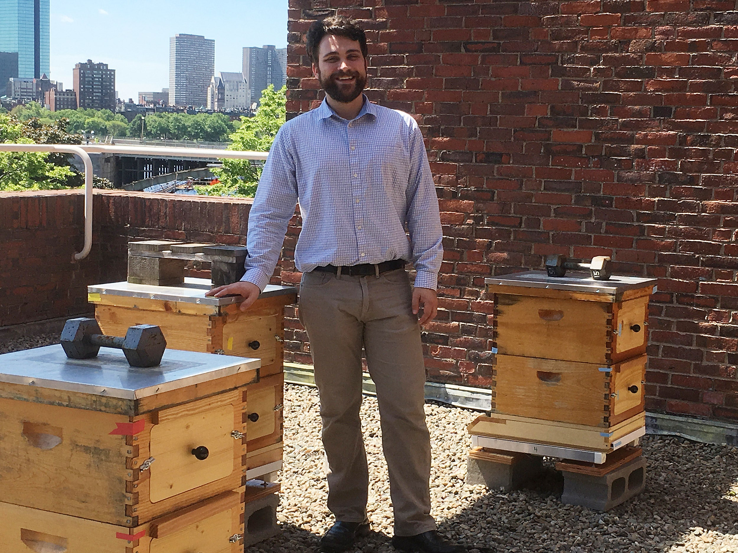 Researcher on roof with beehives.