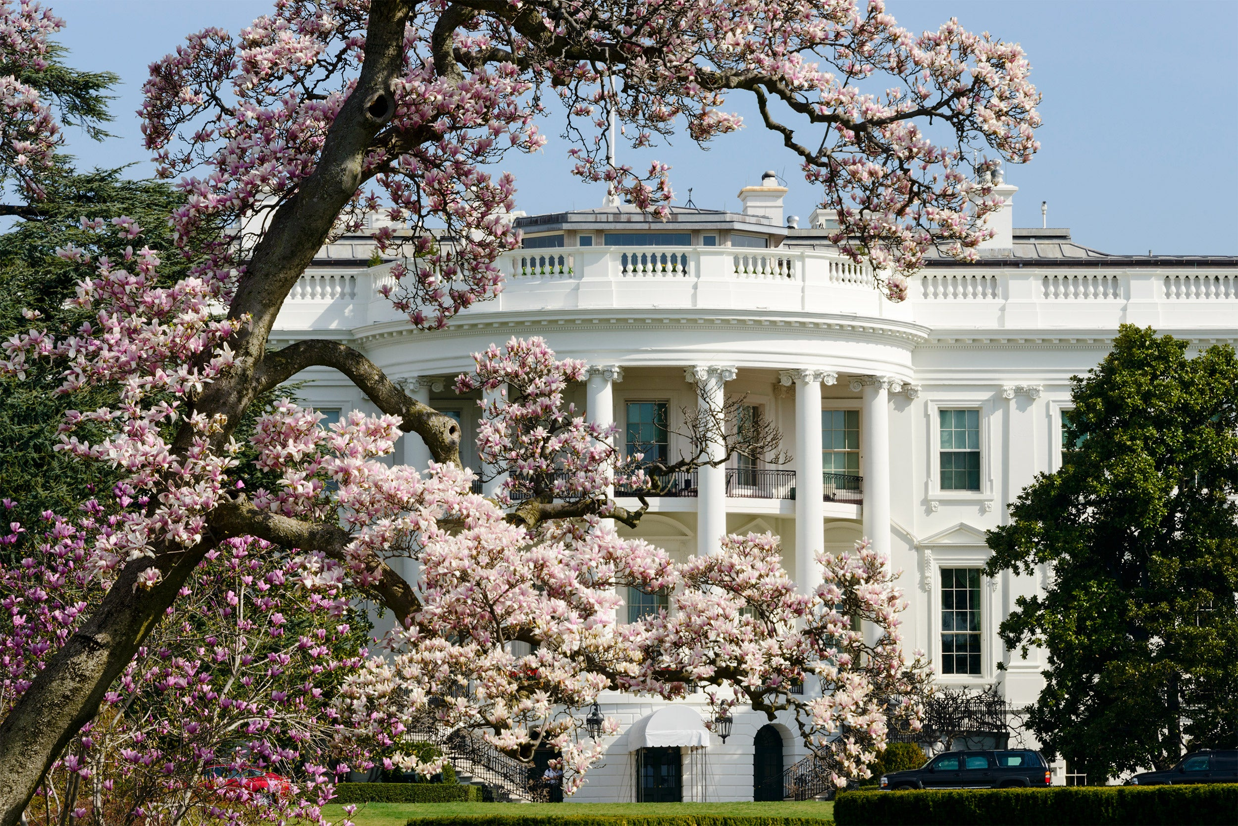 White House in the spring.