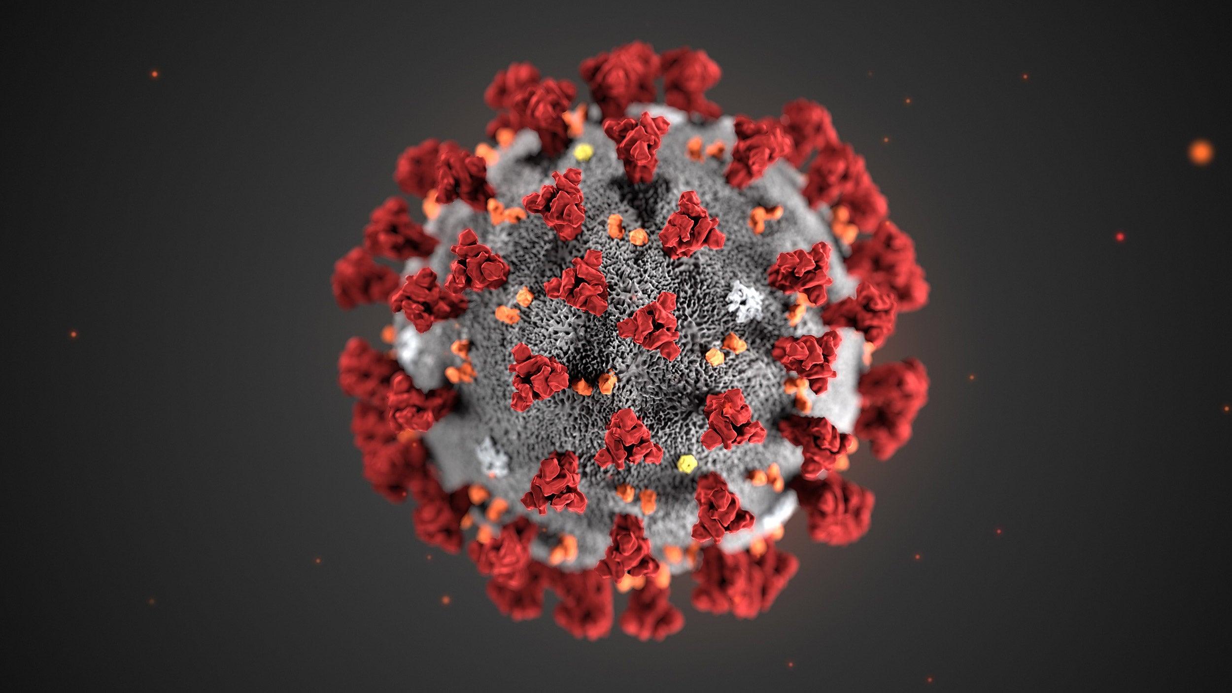Coronavirus magnified.