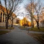 Empty Yard at Harvard.