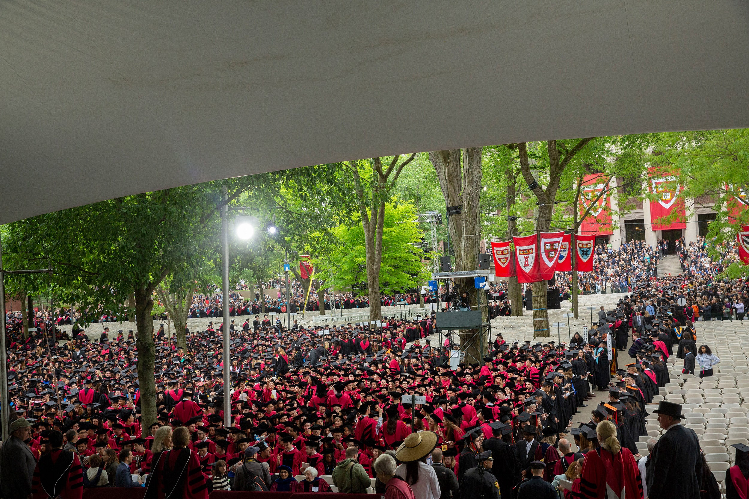 Commencement crowd in Harvard Yard 2019.