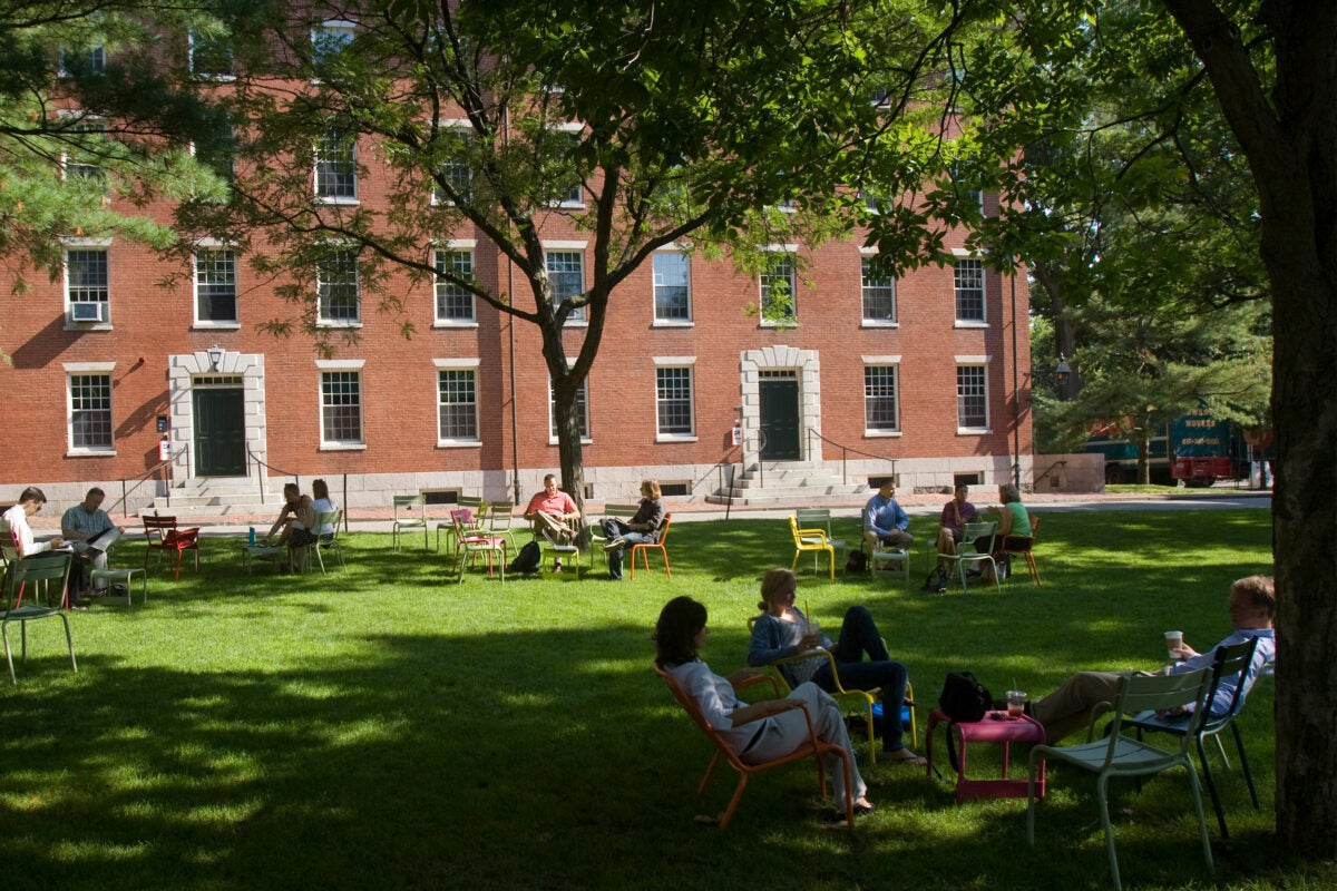 Harvard Yard with people sitting in chairs.