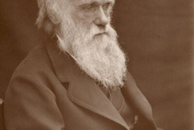 Photograph of Charles Darwin taken around 1874 by Leonard Darwin.