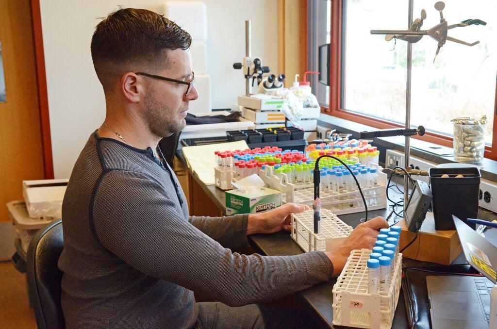 Jake Grossman, Arnold Arboretum Putnam Fellow, in the lab.