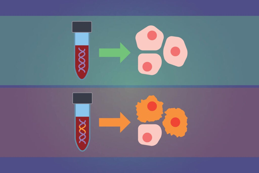 Graphic of blood and cancer cells.