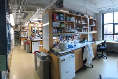Empty lab.