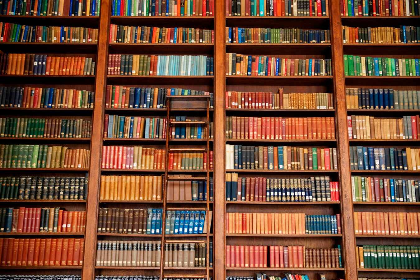 The Dunster House library features a rainbow of classics on its bookshelves.