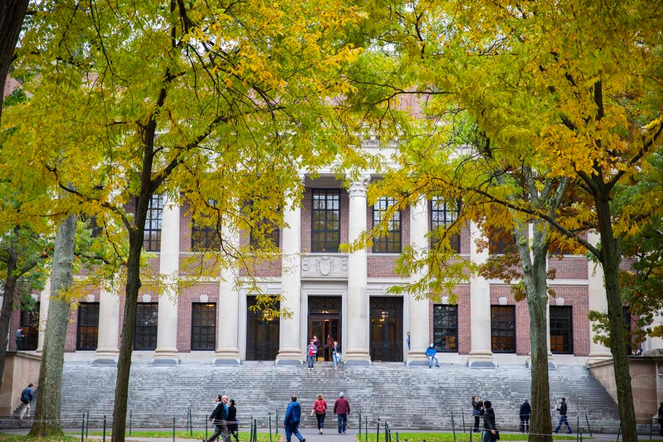 Widener Library is framed by Fall foliage.