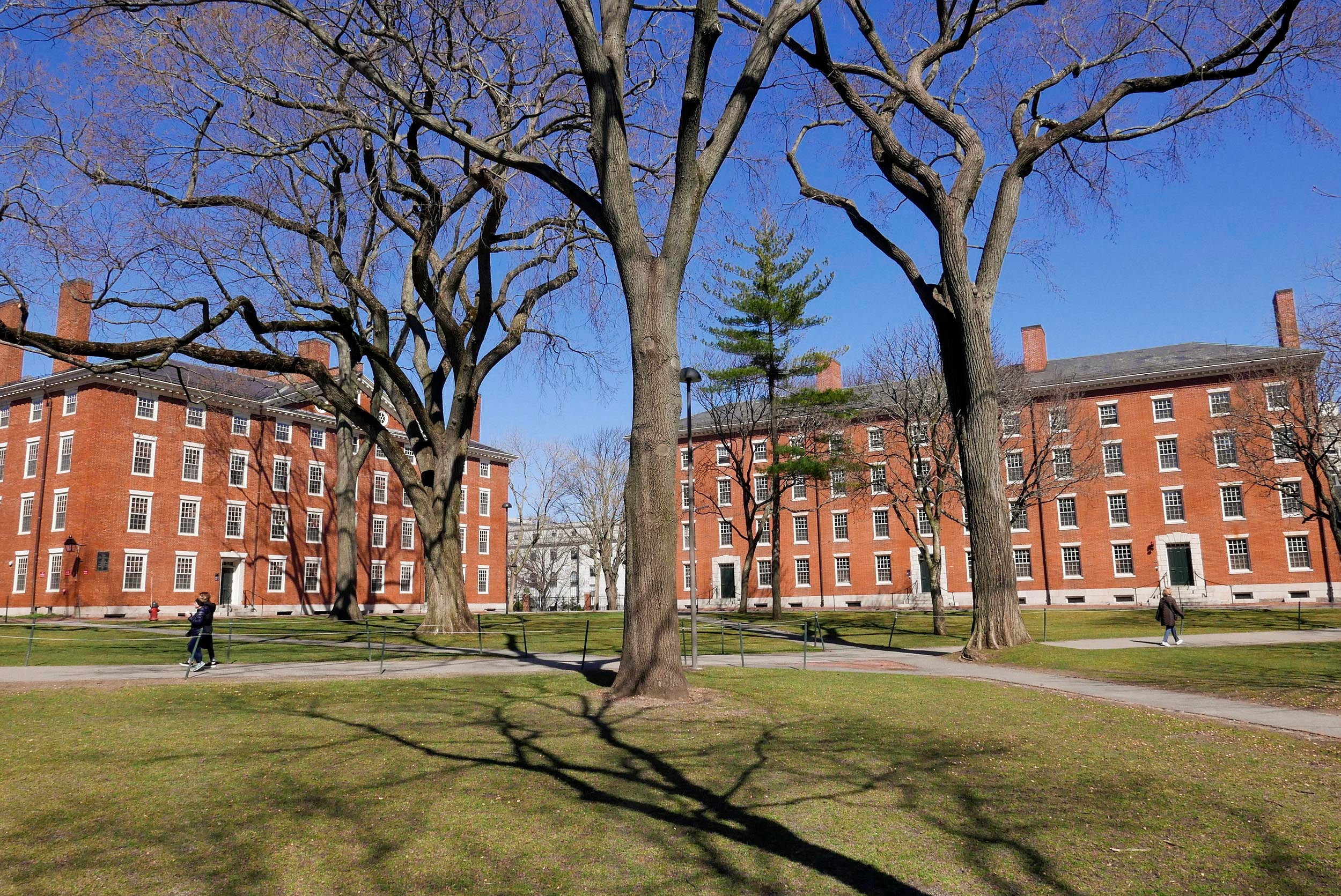 Harvard Yard is pictured.