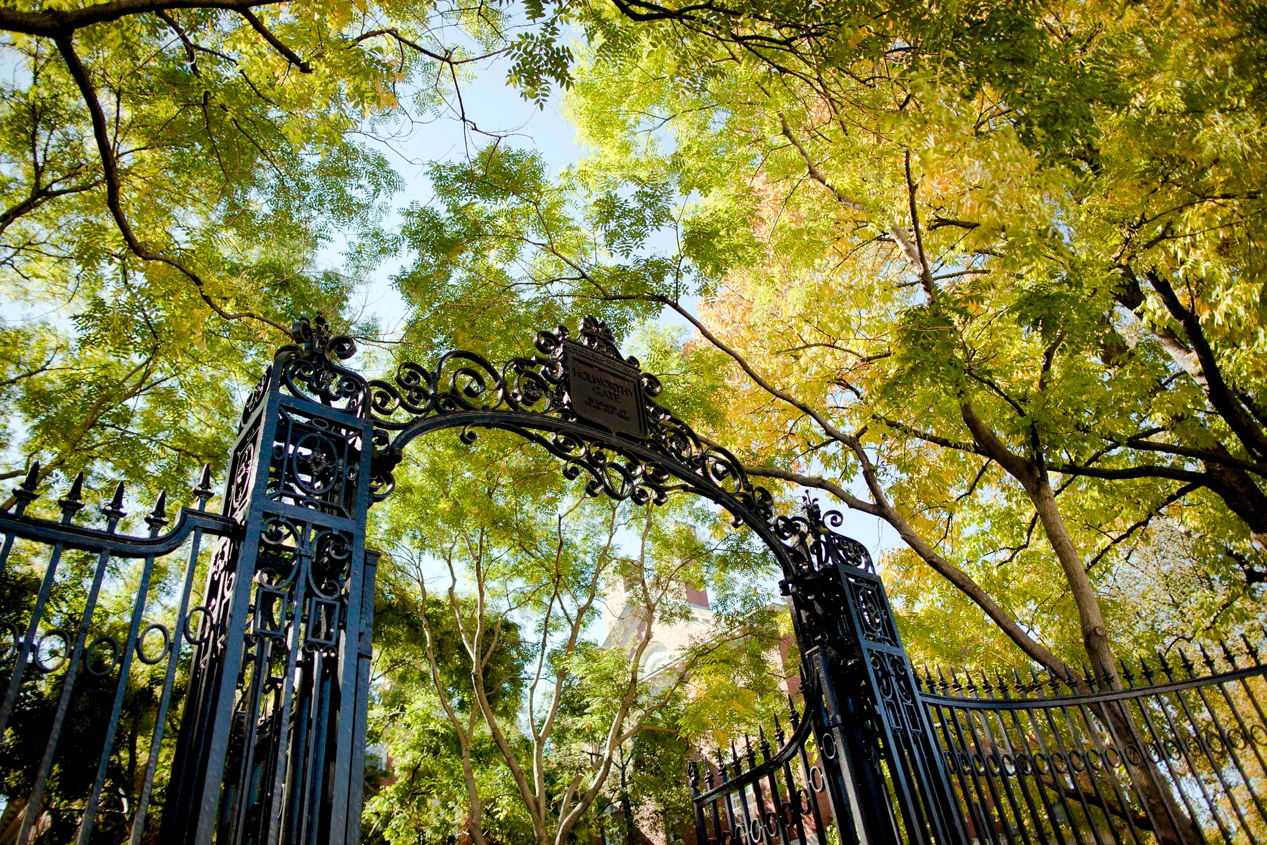 Autumn leaves show their color alongside The Class of 1876 (Holworthy) Gate at Harvard University.