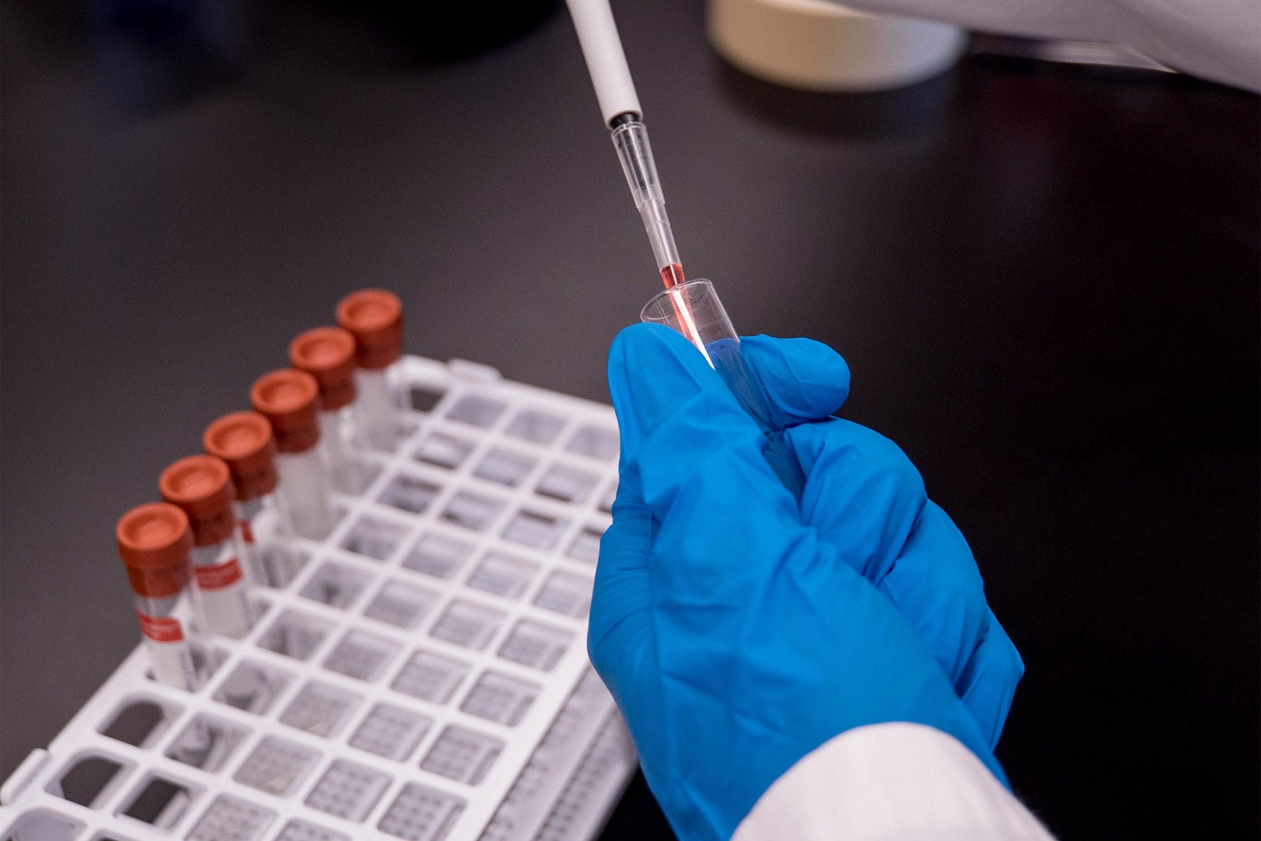 Harvard scientists work to find coronavirus treatment