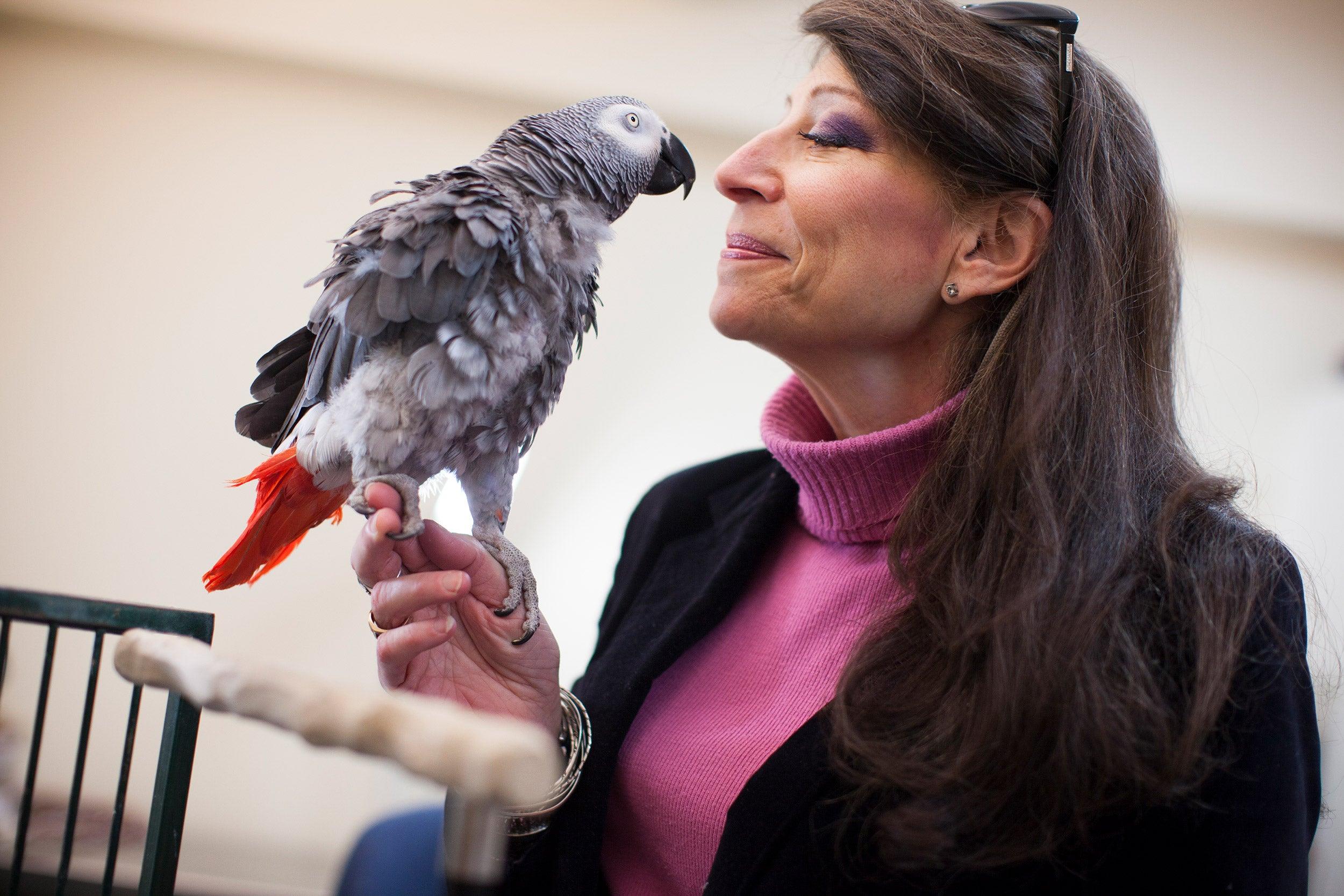 Irene Pepperberg with her parrot.