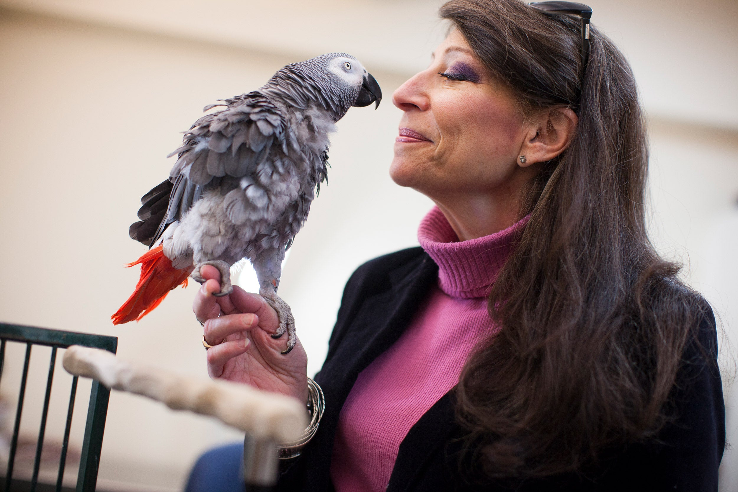 Irene Pepperberg with her parrot.