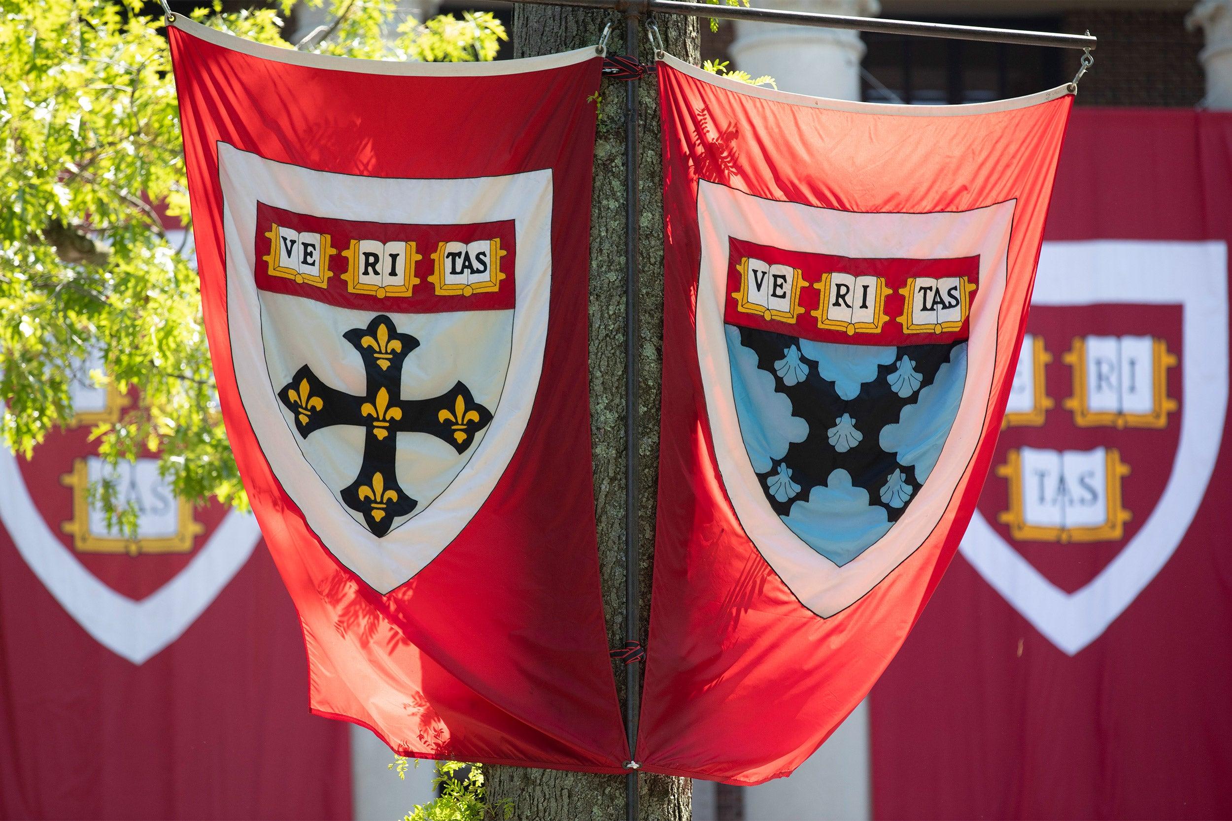 Harvard flags.