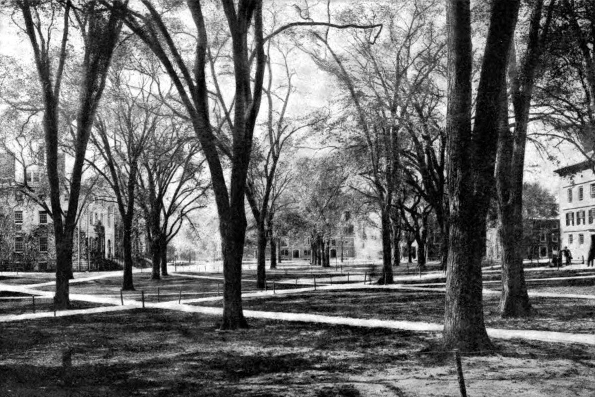 Harvard Yard in 1920.