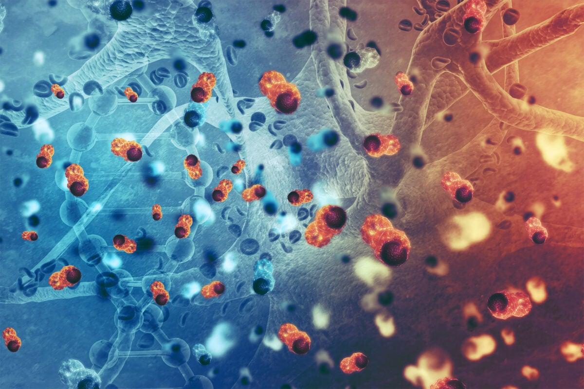Illustration of cancer cells.