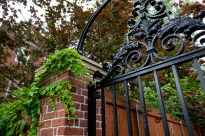Gate with ivy outside Standish Hall