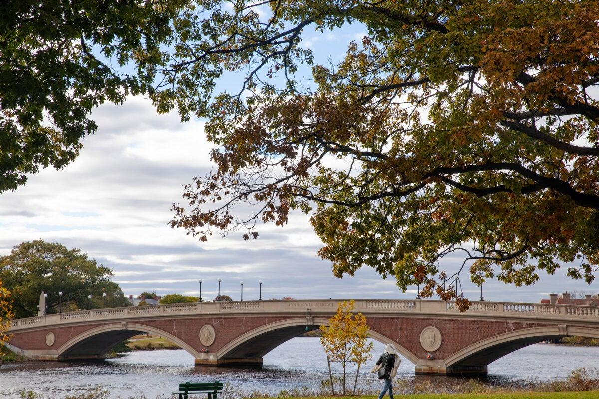 Weeks Bridge to Harvard campus