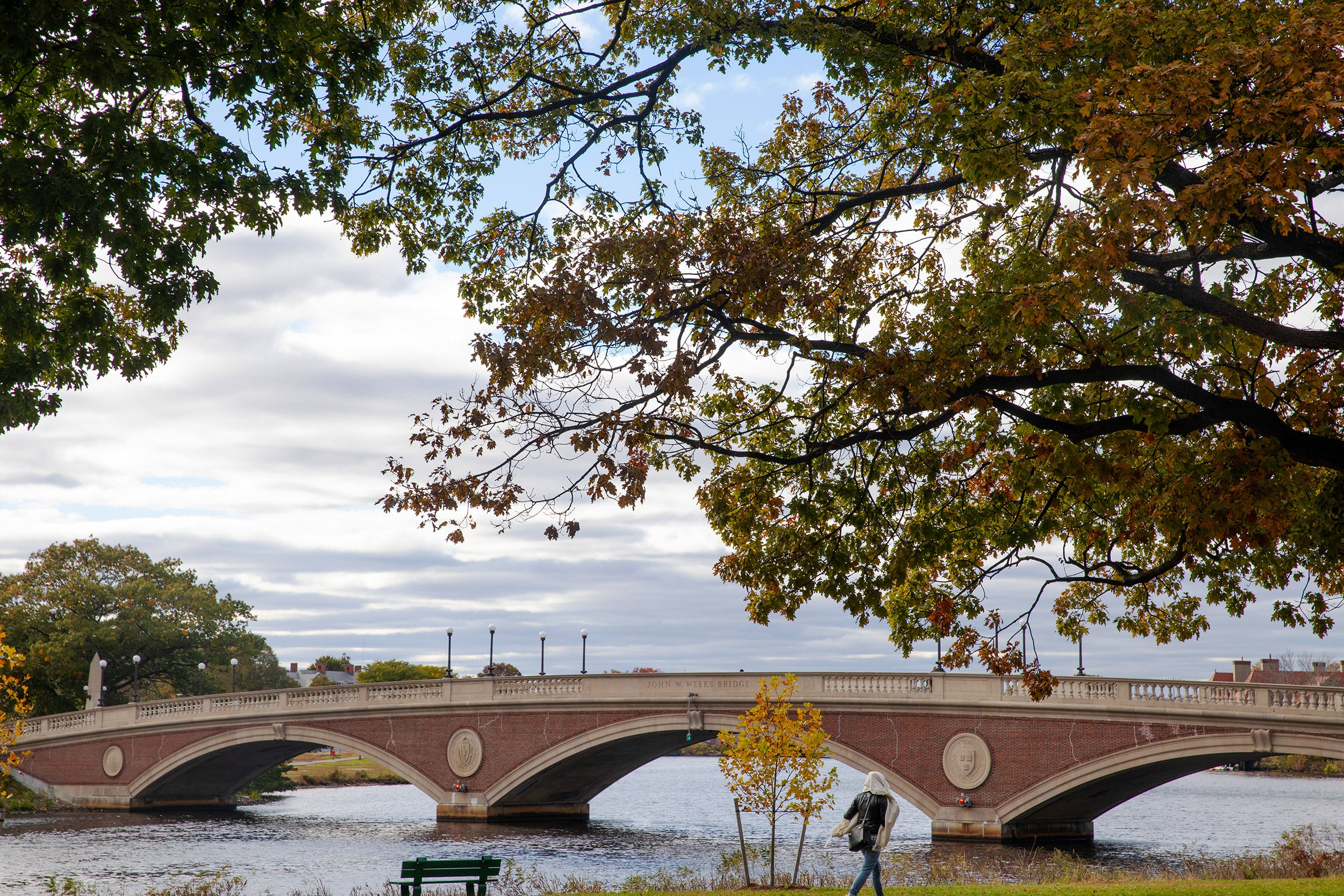 Weeks Bridge to Harvard campus