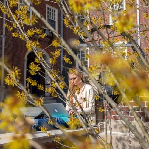 Katherine Miclau '20 studies in Lowell House courtyard.