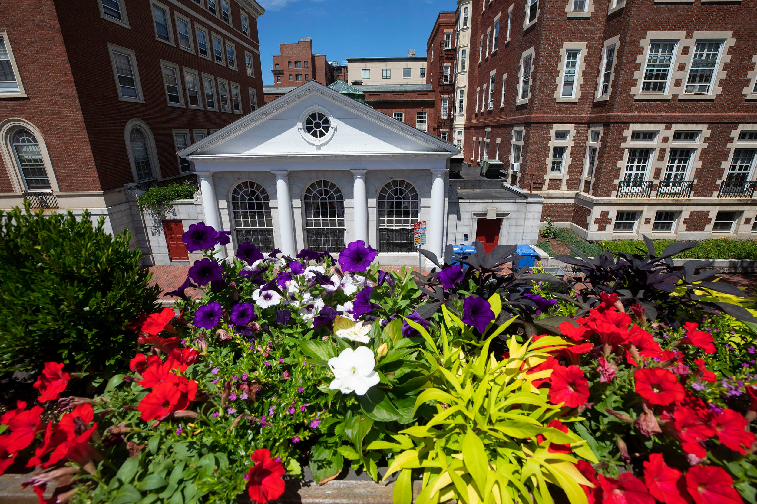 Adams House is brightened by a rainbow of flowers.