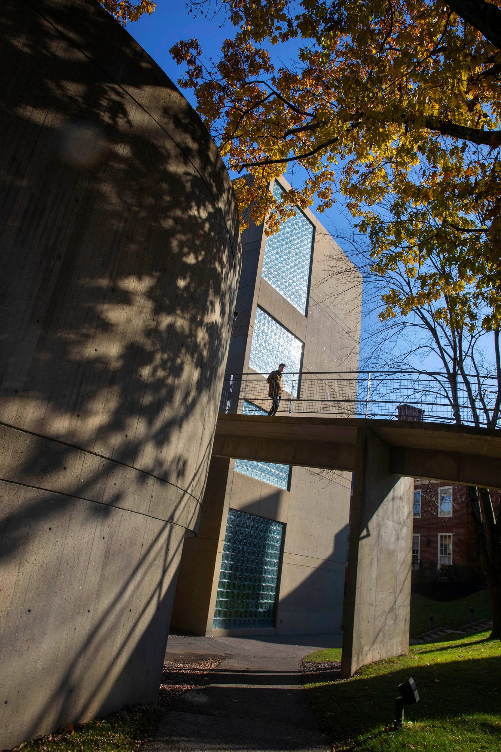 The Carpenter Center ramp offers a scenic passageway for a student crossing beneath the fall foliage.