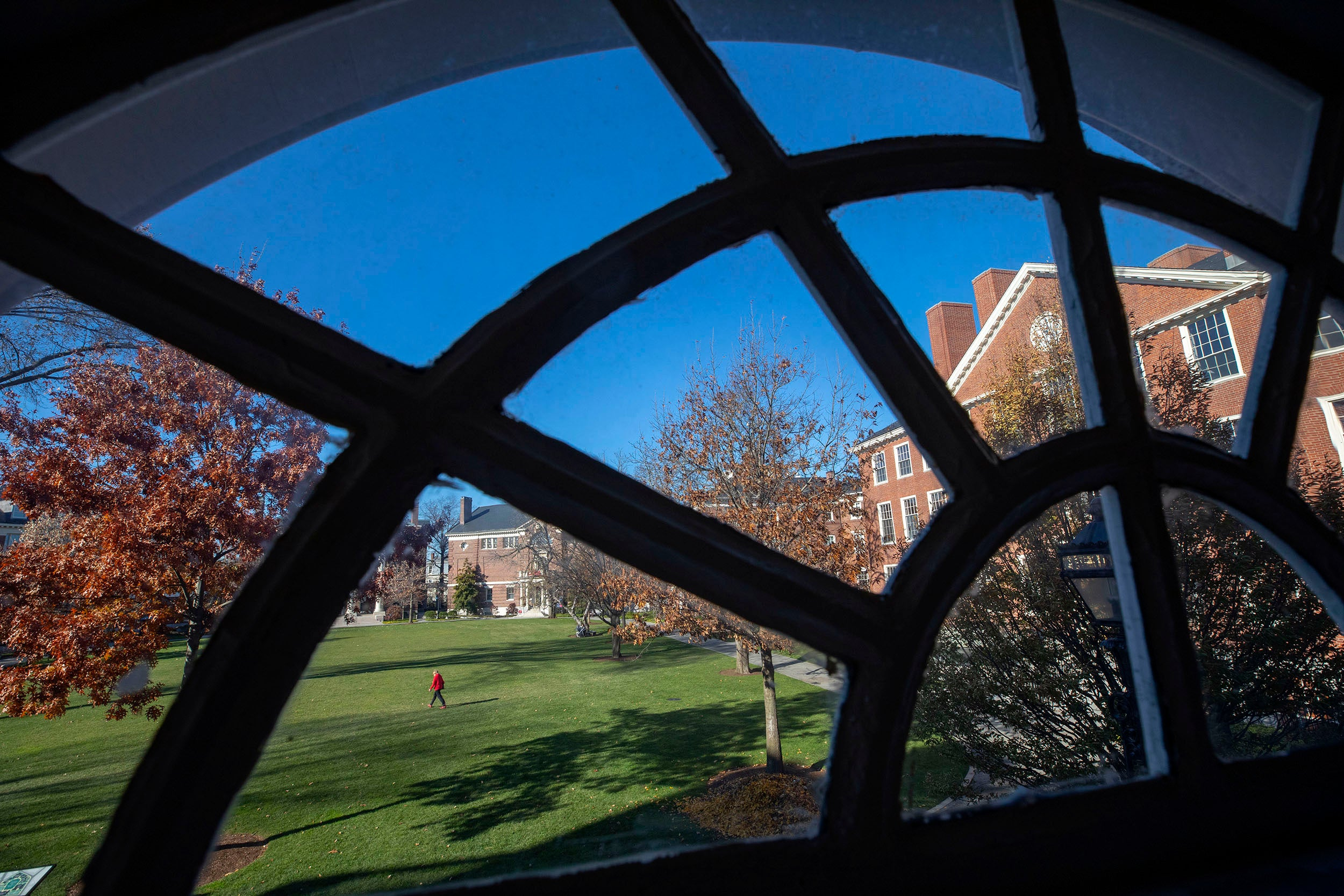 Framed by a Longfellow Hall window, autumn light strikes Byerly hall as a pedestrian passes through Radcliffe Yard.