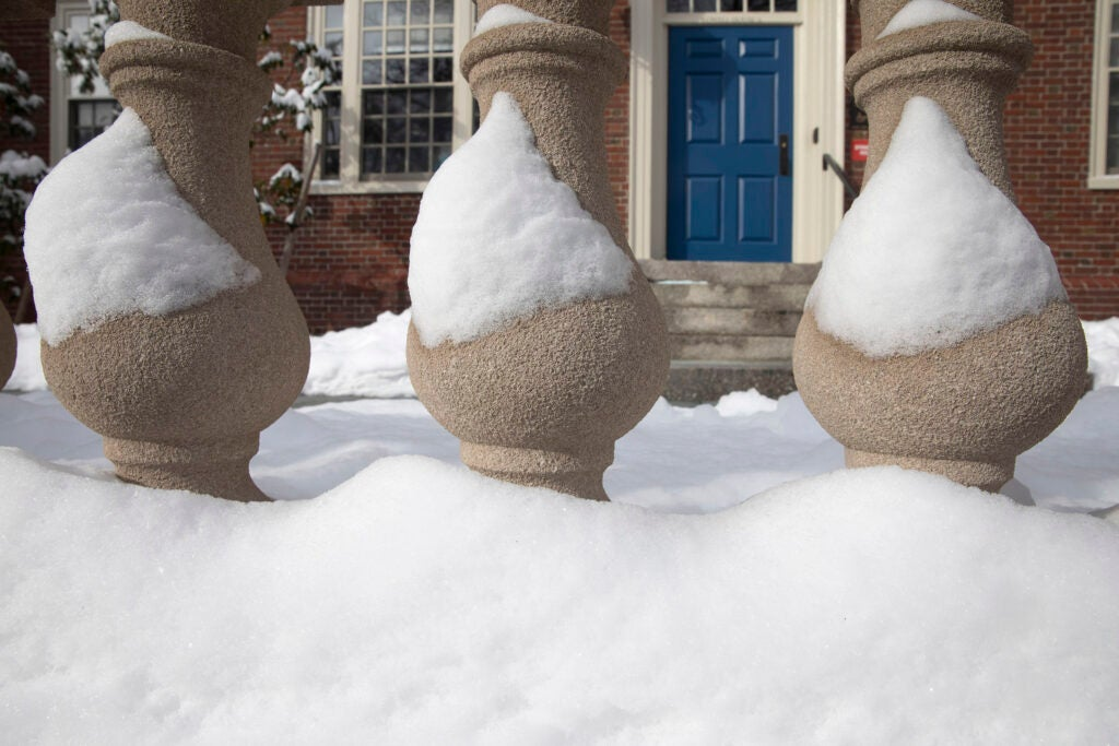 Lowell House columns remain frosted with snow after a storm.