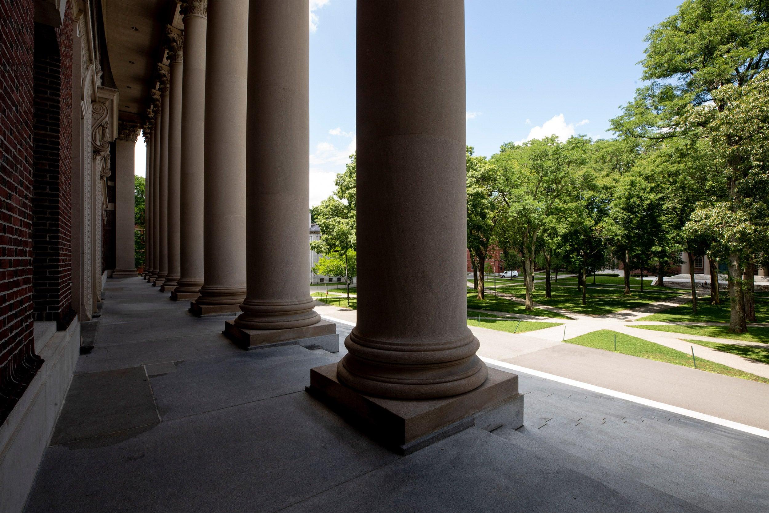 Widener Library steps.