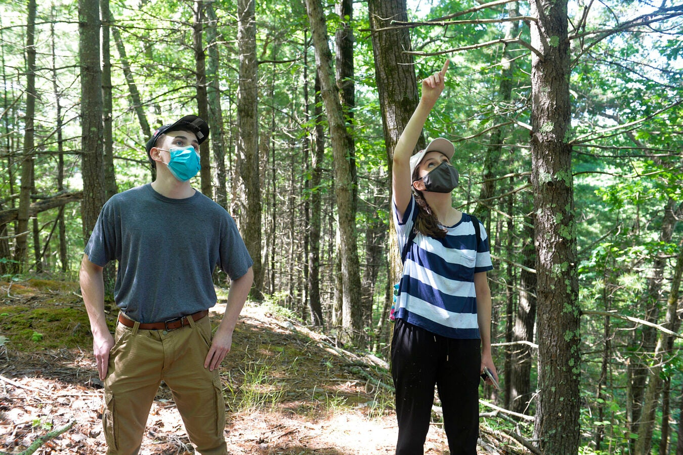 Kate Guerin with her brother in the woods.