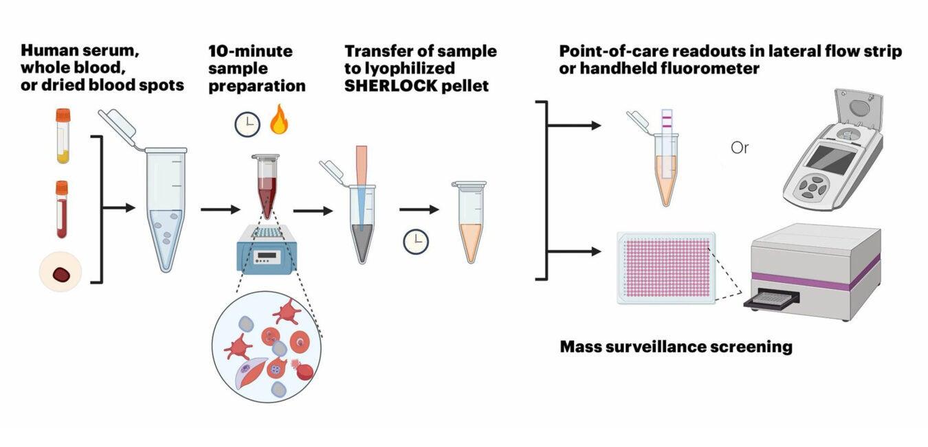 SHERLOCK Malaria Diagnostic Fig1