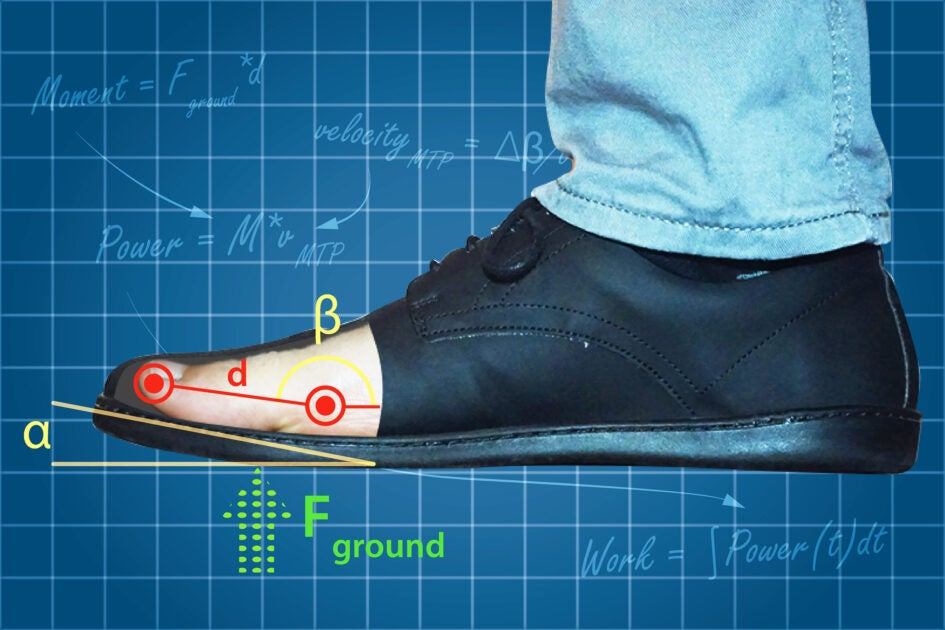Curve on shoes makes walking easier, but may lead to foot problems - Harvard Gazette
