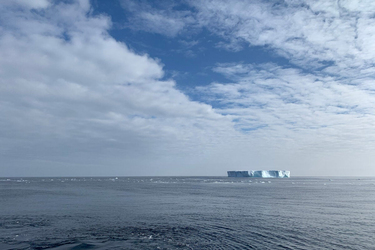 Floating iceberg.