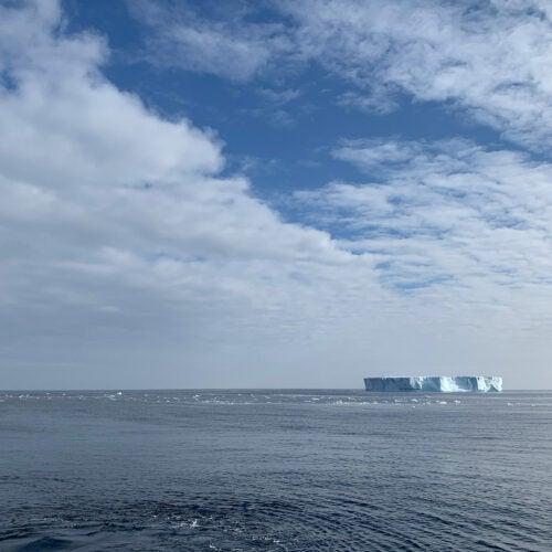 Floating iceberg.