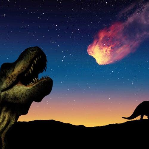 Dinosaur illustration.