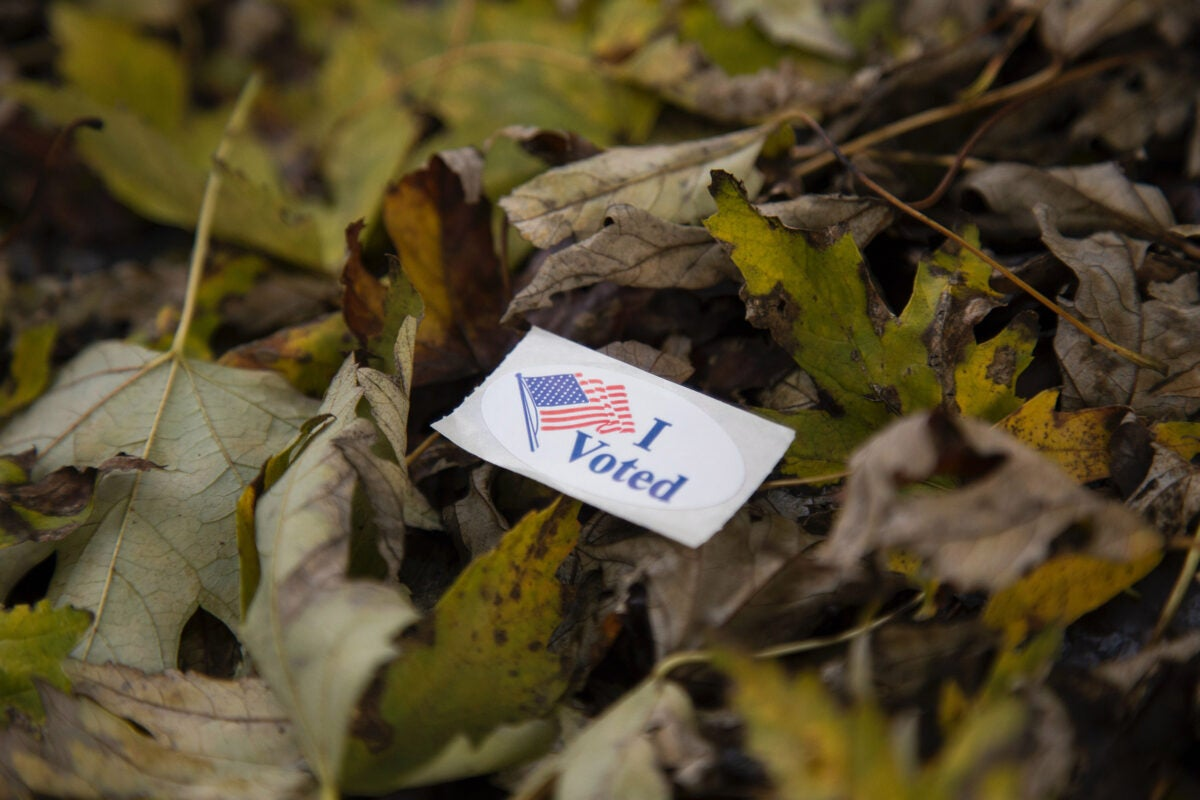I voted sticker on leaves.