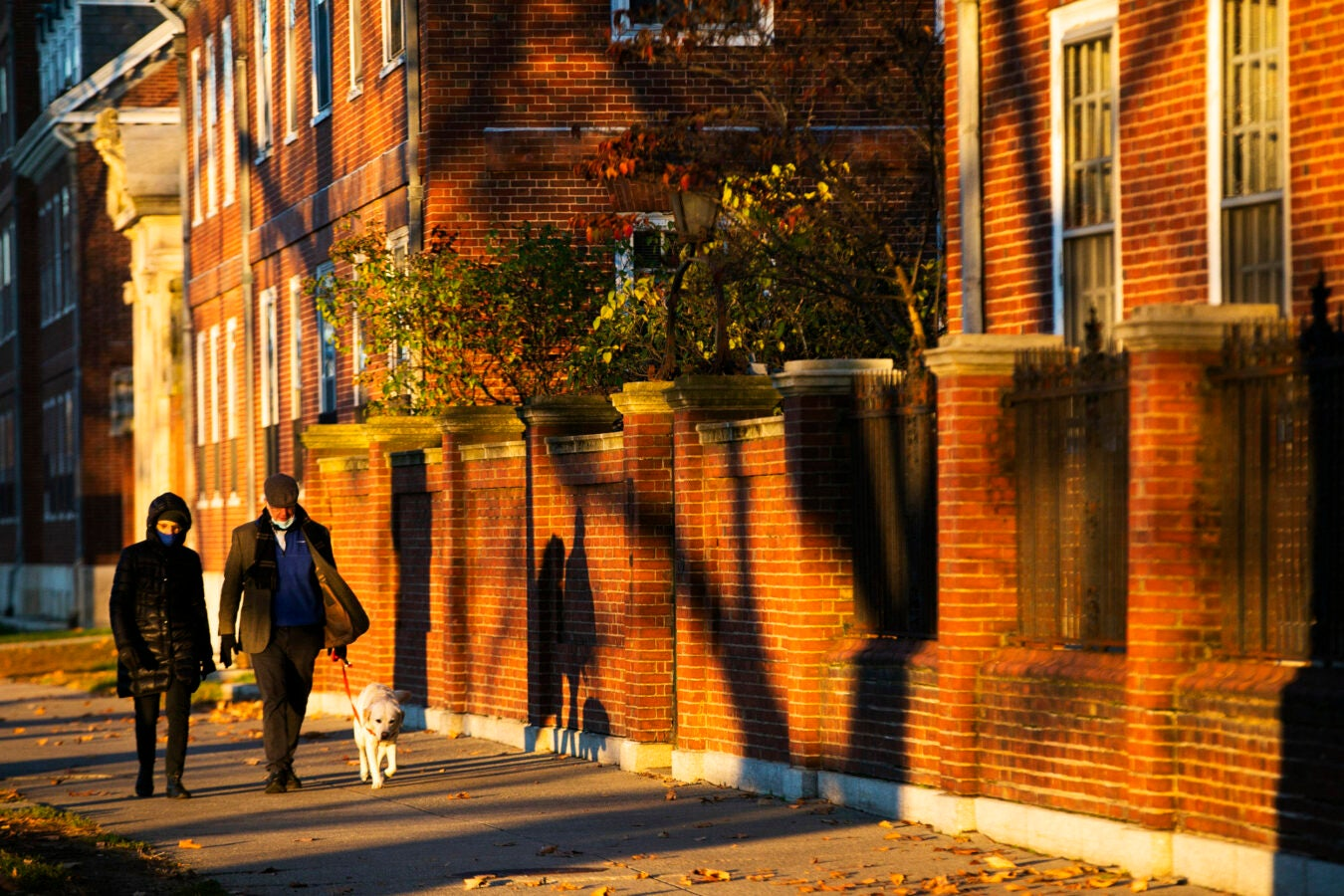 Walkers stroll past the River Houses with their dog.