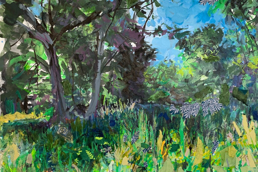 """""""A place in the Shade"""" by Lois Cremmins"""