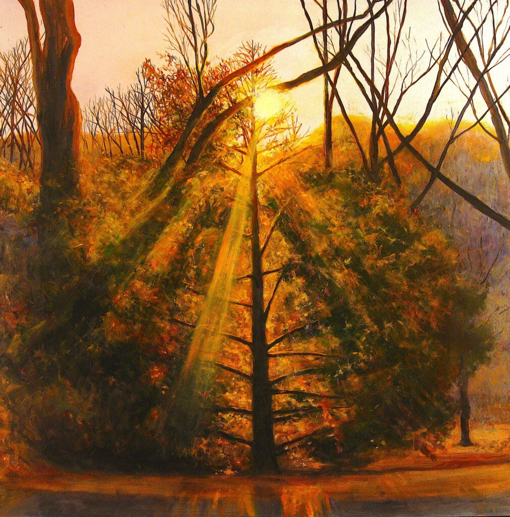 """""""Looking West on Bussey Hill"""" by Tony Apesos"""