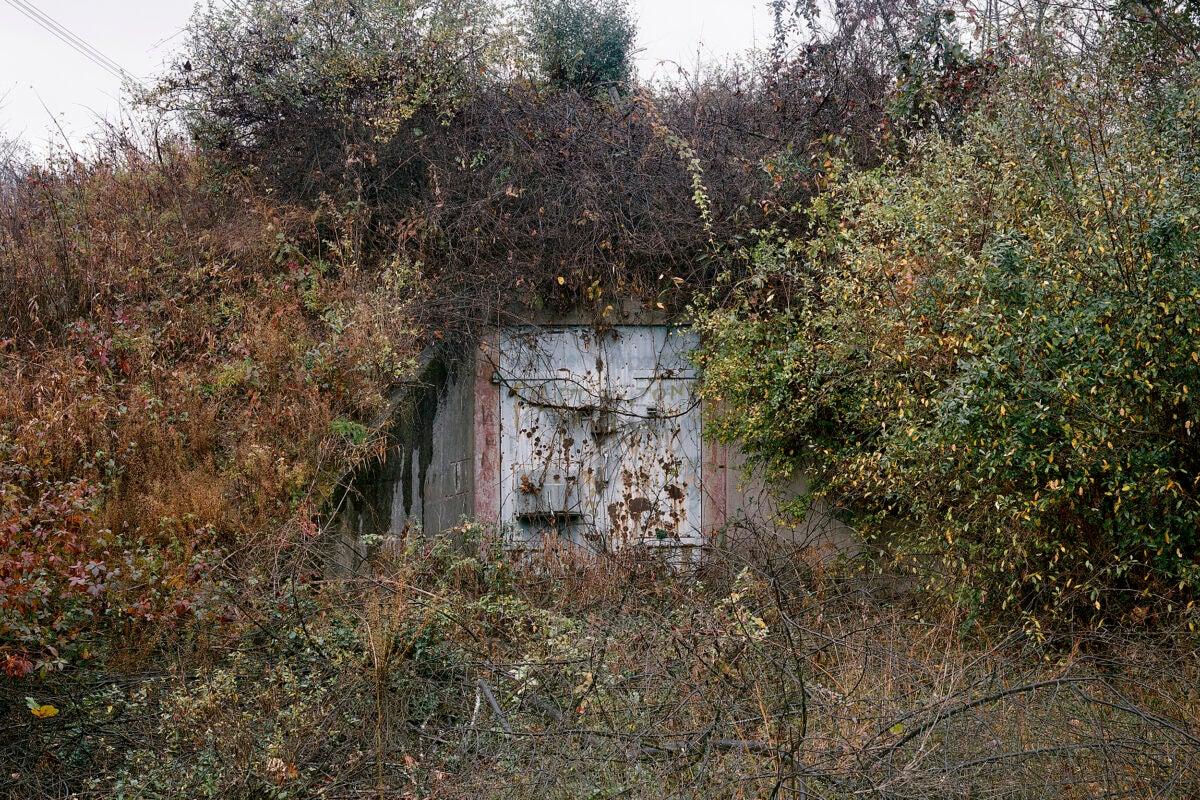 Iron door set in overgrown weeds.